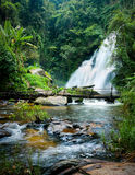 与Pha Dok许瀑布和竹子桥梁的热带雨林风景 泰国 免版税库存图片