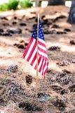 与pinecones的美国国旗 图库摄影