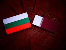 与Qatari旗子的保加利亚旗子在被隔绝的树桩 免版税库存照片