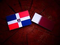 与Qatari旗子的多米尼加共和国旗子在被隔绝的树桩 免版税库存照片