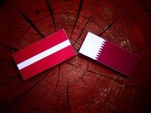 与Qatari旗子的拉脱维亚旗子在被隔绝的树桩 免版税图库摄影