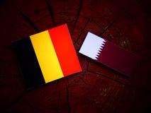 与Qatari旗子的比利时旗子在被隔绝的树桩 库存图片