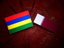 与Qatari旗子的毛里求斯旗子在被隔绝的树桩 库存照片