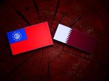 与Qatari旗子的缅甸旗子在被隔绝的树桩 库存照片