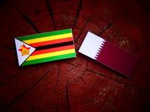与Qatari旗子的津巴布韦旗子在被隔绝的树桩 免版税库存图片