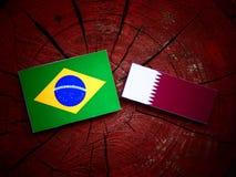 与Qatari旗子的巴西旗子在被隔绝的树桩 免版税库存图片