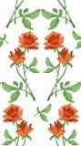与redroses诗歌选的水彩无缝的样式在白色背景的 库存照片