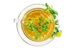 与Rhodiola Rosea上面的清凉茶 库存图片