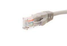 与RJ45头的LAN缆绳CAT5E计算机网络的 库存图片