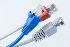 与RJ45连接器的五颜六色的网络缆绳 免版税库存图片