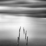 与Ruine码头的海景 库存照片