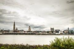 与schelde河的安特卫普地平线 库存照片