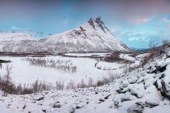 与Signaldalelva河和Otertinden山的美好的风景场面在背景中在挪威北部 r 免版税库存照片