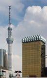 与Skytree塔后面的旭区大厦 免版税库存图片