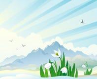 与snowdrops的春天风景 免版税库存照片
