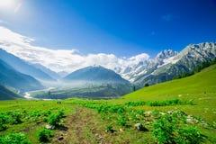 与Sonamarg,查谟和克什米尔状态雪的美好的山景  免版税图库摄影