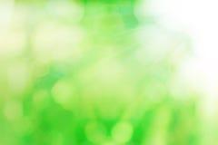 与suy光芒的自然绿色bokeh背景的 库存照片