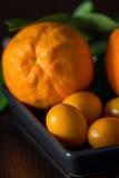 与tangerins的桔子在特写镜头 免版税库存照片