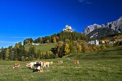 与Tarasp城堡的秋天风景 免版税库存图片