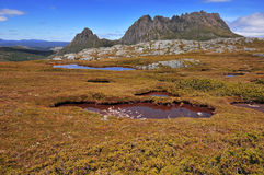 与Tarns,塔斯马尼亚岛澳大利亚的摇篮山 免版税图库摄影