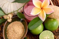 与Tiliacora triandra的乳脂状的新草本面具,麦芽和柠檬,与泰国的自然成份的温泉 免版税图库摄影