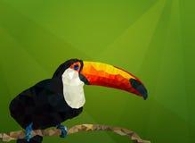 与toucan的传染媒介backround 低多,多角形例证 图库摄影