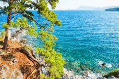 与turquiose水和杉木的沿海在凯梅尔,土耳其附近 库存照片