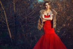 与updo头发的迷人模型和美丽做站立在干燥灌木的佩带的毫华红色摆尾礼服和豪华貂皮背心 库存照片