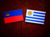 与Uruguaian旗子的列支敦士登旗子在被隔绝的树桩 库存例证
