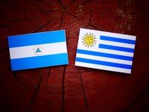 与Uruguaian旗子的尼加拉瓜的旗子在被隔绝的树桩 图库摄影