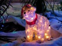 与Xmas光的白熊 库存图片