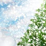 与Xmas杉树的圣诞节背景 库存图片