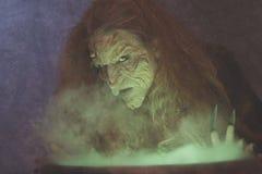 丑恶的邪恶的巫婆 库存图片