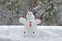 丑恶的雪木偶 免版税库存图片