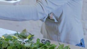 专业卖花人与花一起使用在演播室 股票录像