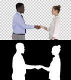 专业商人握手,阿尔法通道 免版税库存照片