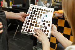 专业她的沙龙的客户的美发师洗染的头发 选择与头发colorpalette的妇女颜色 有选择性 免版税图库摄影