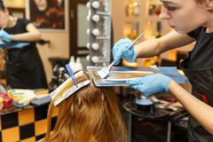 专业她的沙龙的客户的美发师洗染的头发 选择聚焦 免版税图库摄影