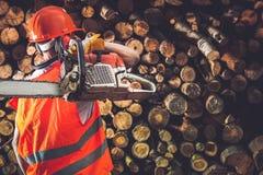 专业木材工作者 免版税库存图片