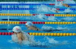 专业竞争游泳者 免版税库存照片
