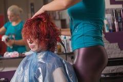 专业美发师工作与客户 库存图片