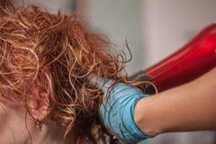 专业美发师工作与客户 免版税库存图片