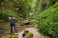 专业自然摄影师 免版税图库摄影