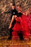 专业舞厅舞夫妇预先形成陈列舞蹈 免版税库存图片
