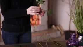 专业花卉艺术家,卖花人从额外叶子清洗花-淡黄的玫瑰在花店,车间 股票视频