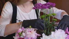 专业花编排者显示如何做混杂的花花束 股票视频