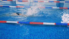 专业运动员游泳对水池的另一边 股票视频