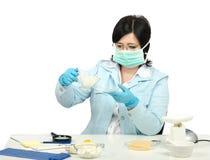 专家严密地观看牛奶在实验室 库存图片