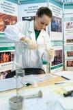 专家agroecologist做一个实验 免版税库存照片