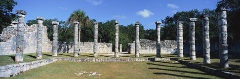 专栏一幅全景在奇琴伊察包围状况的,在尤卡坦半岛,墨西哥的玛雅废墟象草的庭院 图库摄影